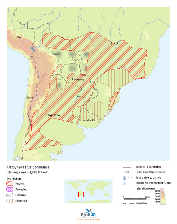 Crowned eagle distribution in South America