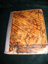 Sanford's Diary