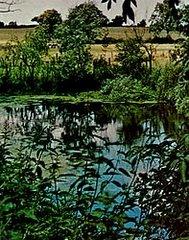 Hawcross Pool
