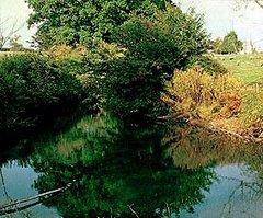 Pond on the Benbow farm