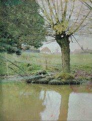 Benbows Pond c1966