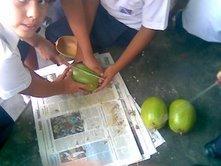Alumnos trabajando la tapara para la elaboraciòn de artesanìas (U.E.P. Chiquinquirà)