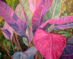 Heliconia -Hawaiian Rain forest