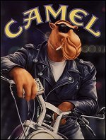 Camel-x
