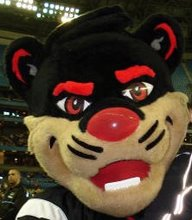 The Bearcat!!!