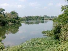 Río El Jagüey