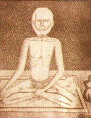 Swami Virjanand ji