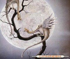 Luna de Dragón