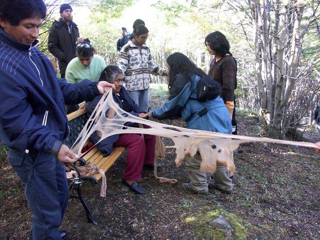 yatana.bosque de lengas.ushuaia