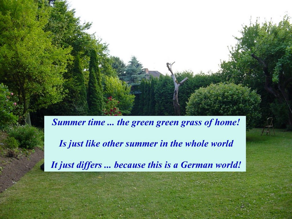 Summer Time ... The Green Green Grass Of Home!