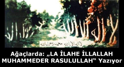 ALLAH'TAN BAŞKA İLAH YOK!