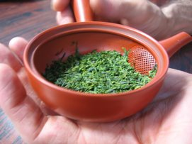 Organic Sencha