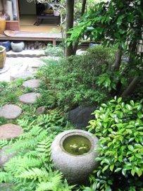 Soren's Garden