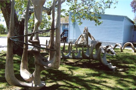 Hubbell Sculptural Garden Panorama