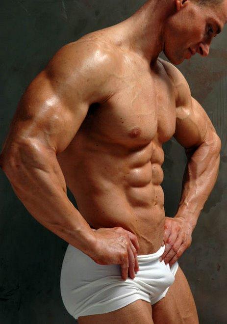 Musculos 1
