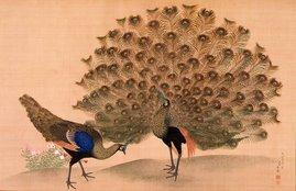 Paon et paonne, très belle peinture sur soie de Maruyama Ōkyo