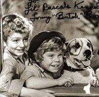 Eastmoreland Dog Association