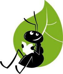A nossa formiga