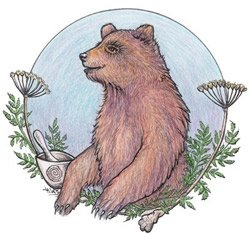 Bear Medicine
