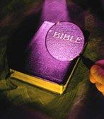 God's Precious Word