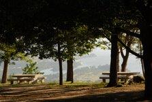 Parque con vista