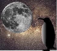 Penguinella