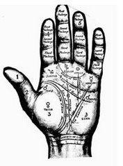 Imagem da Palma de uma Mão