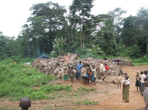 Pygmy Village - Mekas - Southeast Cameroon