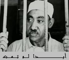 Qutb, Freedom's Martyr
