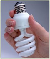 Changing lighbulbs is a small step in the right direction