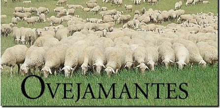 Ovejamantes