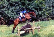 Airborne the Wonder Horse