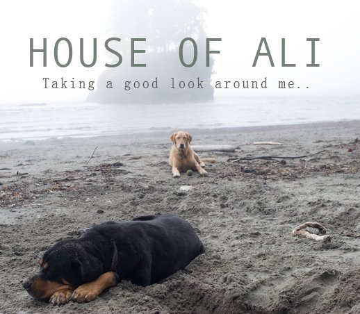 HOUSE OF ALI