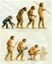 Evolución @