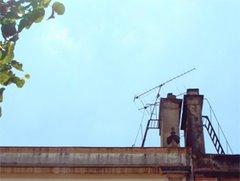 屋根の上に立つもの 2007.6.23
