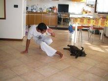 Eu jogando com meu gato