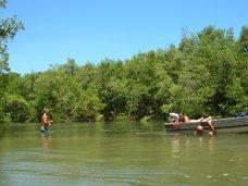 manglares isla Carapeba