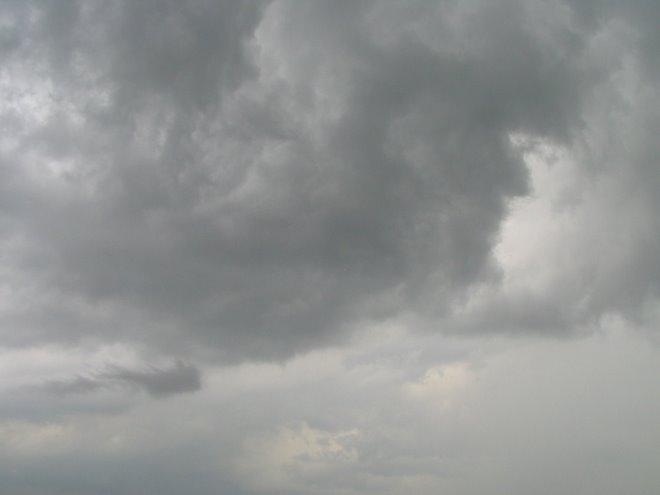 chasse juin 2007