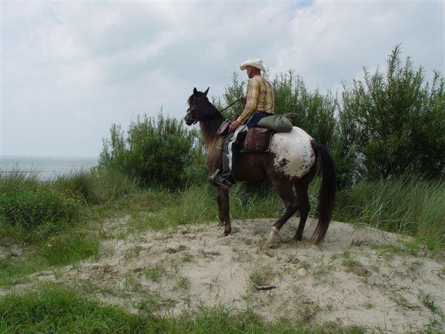 Cowboy Johan