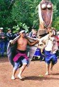 Choike Purrun -Baile del avestruz *Cultura mapuche