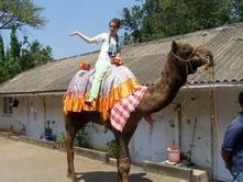 sometimes i ride camels.