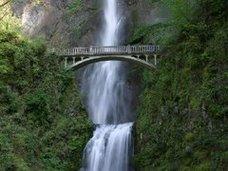 El Curriculum es como un puente si le falta una parte no esta completa