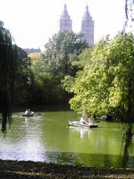 Lake in Central Park
