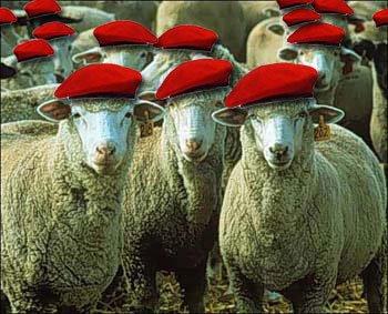 Desfile chavista