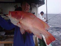 Red Emperor (Sarawak)