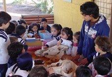 PROGRAMA PERMANENTE DE EDUCACION AMBIENTAL