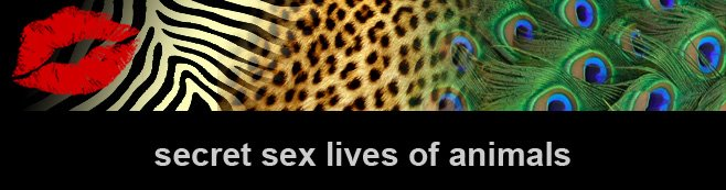 Secret Sex Lives of Animals