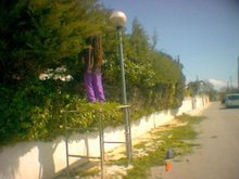 rasta-jardiner