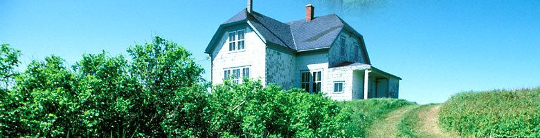 Bulgarian Property Investor