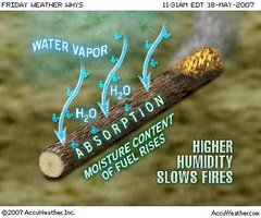 Humidity vs.The Wildfire